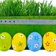 Royalty-Free Stock Photo: Easter eggs next to the bucket with the green grass