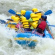 Whitewater Rafting — Stock Photo #5254893