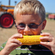 Boy Eating Corn on the Cob — Stock Photo #5255097