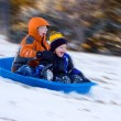 Stock Photo: Excited Boys on Sled Ride