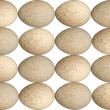 Speckled Egg Background — Stock Photo