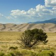 Great Sand Dunes Landscape Colorado — Stock Photo
