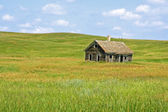 Old Homestead on the Prairie — Stock Photo