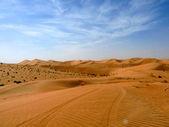Long Journey into the Desert — Stock Photo