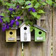 Three birdhouses on old  wooden fence - Foto Stock