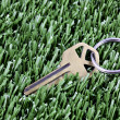 Key with keyring laying in mown grass — Stock Photo #5269630