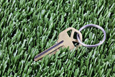 Key with keyring laying in mown grass — Stock Photo