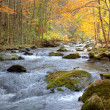 Smoky Mountain Stream in Autumn - Stock Photo
