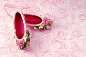 Pink Ballet Slippers — Stock Photo