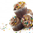 Chocolate Cupcakes — Stock Photo #5303283