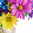Colorful High Key Flowers — Stock Photo