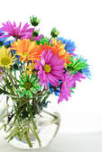 Colorful Daisies In A Vase — Stock Photo