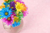 Colorful Flowers Pink Background — Stock Photo