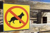 Keine hunde — Stockfoto