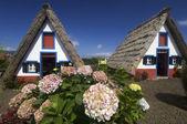 Maisons dans l'île de madère — Photo