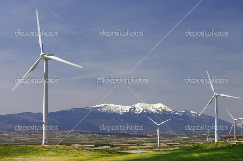 Group of windmills in an idyllic green meadows — Stock Photo #5344179