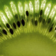 Kiwi close up - Stock Photo