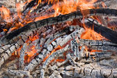 Bonfire ash — Stock Photo