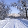 Road in winter — Stock Photo #5275762