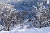 January on island Sakhalin — Stock Photo