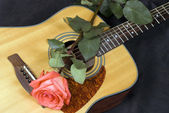 Guitar and rose — Stock Photo