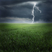 Storm and lightning on the green field — Stock Photo