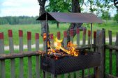 Fire in a brazier on the nature — Stock Photo