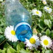 Stock Photo: Discarded plastic bottle