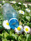 Discarded plastic bottle — Stock Photo