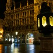 Night Munich — Stock Photo #5353838