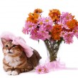 Cat lying near vase with flowers - Stock Photo