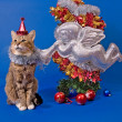 Stock Photo: New Year card with cat and angel