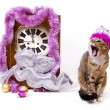 Stock Photo: New Year card with clock and cat