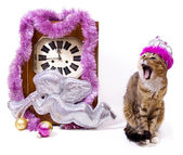 New Year card with clock and cat — Stock Photo