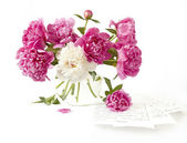 Bouquet of pink and white peonies — Stock Photo