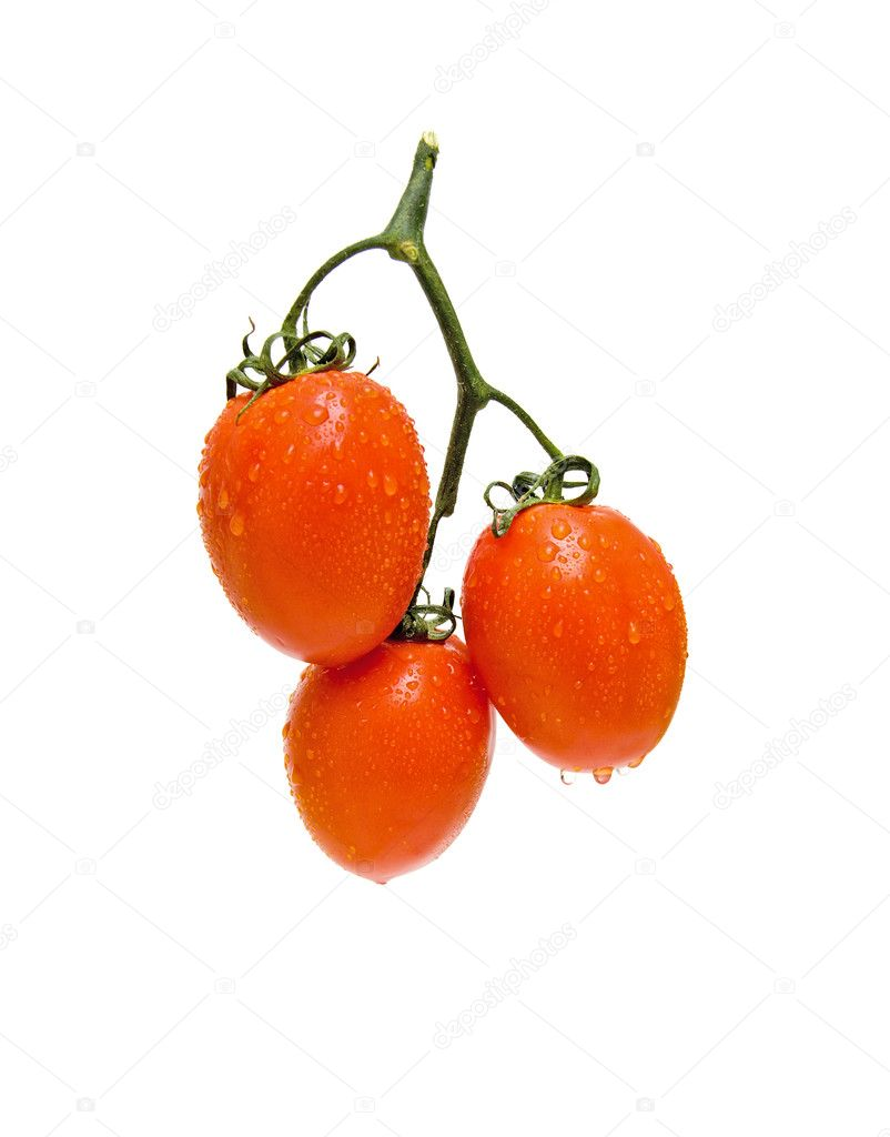 Bunch of fresh tomatoes on a white background — Stock Photo #5289664