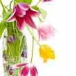Bouquet of tulips of different colors in the vase — Foto Stock