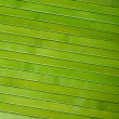 Bright green bamboo planks background — Stock Photo