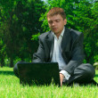Stock Photo: Businessmin park on grass workin on laptop