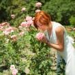 Woman in roses garden — Stock Photo