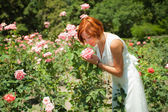 Woman in roses garden — Stock Photo
