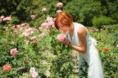 Gül bahçesinde kadın — Stok fotoğraf