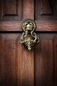 Knocking on Dracula's door — Stock Photo
