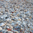 Stone on beach - Stock Photo