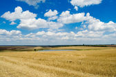 Rural view — Stock Photo