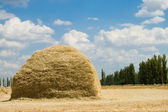 стек sttraw — Стоковое фото