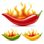 Green yellow and red hot chili peppers