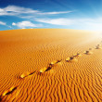 thumbnail of Footprints on sand dune