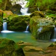 thumbnail of Waterfall in green nature