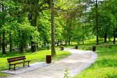 Szép tavaszi park